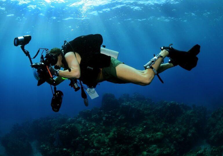 ΑΝΔΙΚΑΤ: Καταδυτικές Διαδρομές σε Θαλάσσιες Προστατευόμενες Περιοχές της Ανατολικής Μεσογείου ‐ Η Υποθαλάσσια Διαδρομή στα Παλάτια Σαρίας