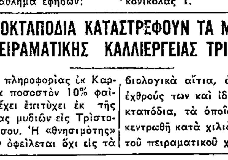 """Σαν σήμερα 8.4.1969 εφ. Ροδιακή """"Τα οκταπόδια καταστρέφουν τα μύδια της πειραματικής καλλιέργειας Τριστόμου"""""""