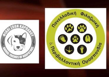 Οι Φίλοι Ζώων Καρπάθου είναι και επίσημα μέλη της Πανελλαδικής Φιλοζωικής και Περιβαλλοντικής Ομοσπονδίας